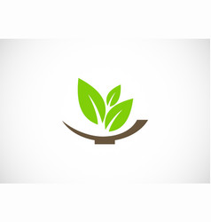 green organic leaf logo vector image
