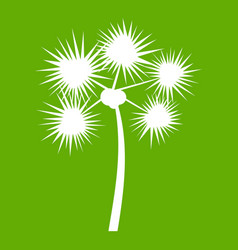 Spiny tropical palm tree icon green vector