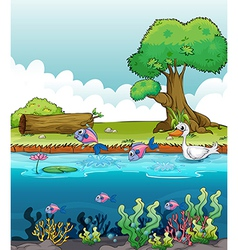 Sea creatures with a duck vector image vector image