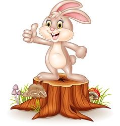 Cartoon bunny giving thumb up on tree stump vector image vector image