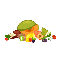 Exotic tropical fruits and forest berries isolated vector