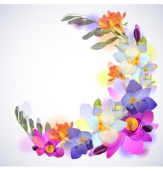 Greeting square background with freesia flowers vector image vector image