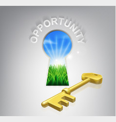 key opportunity concept vector image