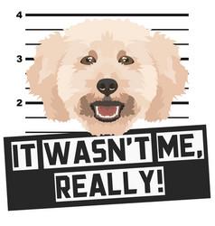Mugshot mug shot poodle vector