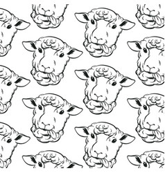 pattern with hand drawn sheeps template for card vector image