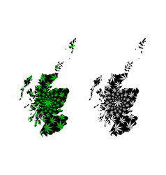 Scotland - map is designed cannabis leaf vector