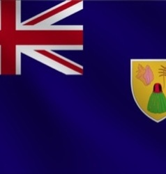 Turks And Caicos Islands flag vector
