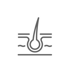simple skin and hair line icon symbol and sign vector image