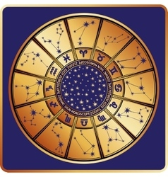 All zodiac signconstellationHoroscope circle vector image