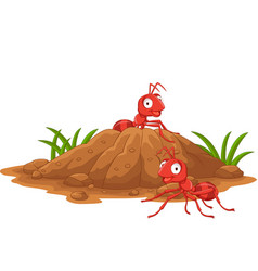 Anthill in forest land vector