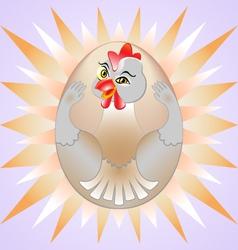 Chicken egg vector