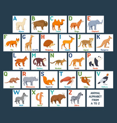 cute animals alphabet cards for kids education vector image