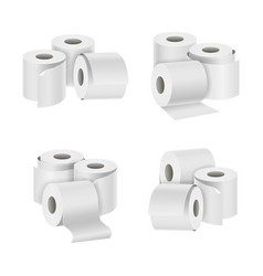 realistic template blank white toilet paper vector image