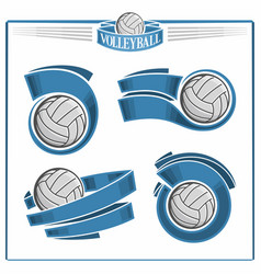 volleyball balls vector image vector image