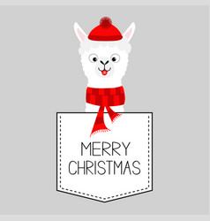 merry christmas llama alpaca animal dash line vector image