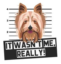 Mugshot mug shot yorkshire terrier vector
