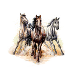 Three horses run gallop from a splash of vector