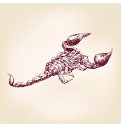 Scorpion hand drawn llustration realistic sketch vector image vector image