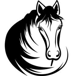 Head of horse vector image