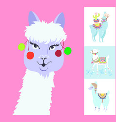 alpaca portrait for avatar funny llama with vector image