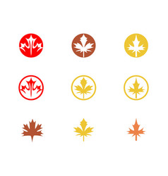 autumn leaf logo icons vector image