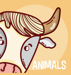 Bull animal cartoon vector