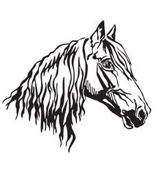 decorative portrait of orlov trotter horse vector image
