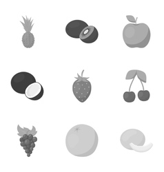 Fruits set icons in monochrome style Big vector