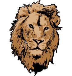 lion head in 3 colors interpretation vector image