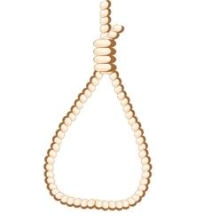 Loop from rope vector