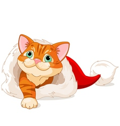 Kitten getting out from Santa Hat vector image vector image