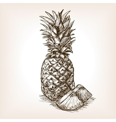 Pineapple fruit hand drawn sketch style vector image vector image