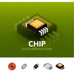Chip icon in different style vector image
