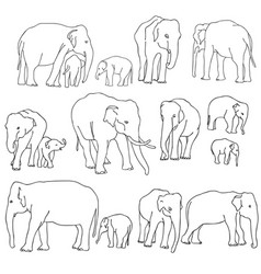 set elephants vector image