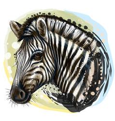 zebra sketchy realistic color portrait zebra vector image