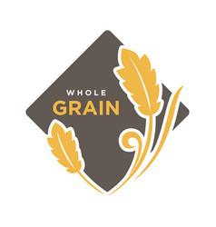 whole grain organic cereals logo wheat symbol vector image