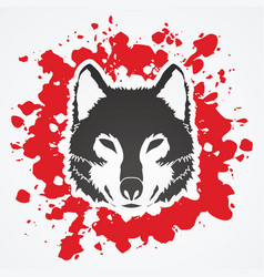 wolf face front view fox head vector image vector image