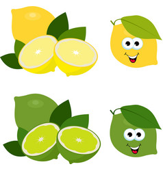 citrus fruit fresh lemon and lime collection of vector image