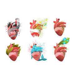 heart health and cardiology concepts designs vector image