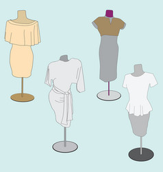 image of stylish women clothes vector image