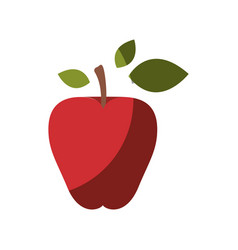 Realistic colorful shading image red apple fruit vector