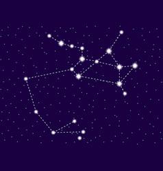 Sagittarius constellation starry night sky zodiac vector
