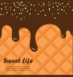 wafer and chocolate background ice cream vector image