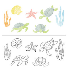 watercolor set turtle coral sea star isolated vector image