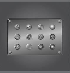 metal screws vector image
