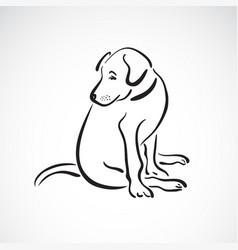 sitting doglabrador retriever on white vector image