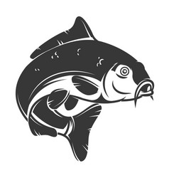carp fish isolated on white background design vector image