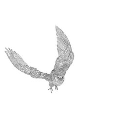 Drawing of flying amur falcon bird isolated on vector