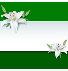 Festive greeting or invitation card 3d flower lily vector image