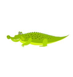 friendly cute green crocodile character aligator vector image